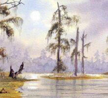 Sunrise Over Wakulla River Florida Sticker