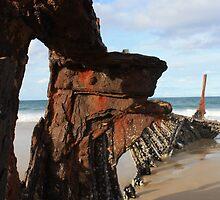 Rusting Ribs by Jon Charles