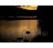 Beauty at 5:47pm Photographic Print