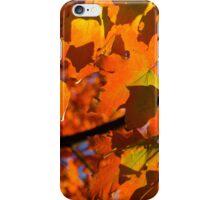 Orange Fall Maple Leaves iPhone Case/Skin