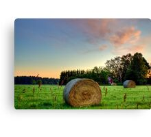 Colorful Fields Canvas Print