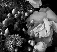 Still Life with Camellia by Lightengr