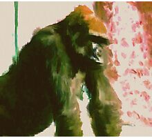 Furry Monkey Photographic Print