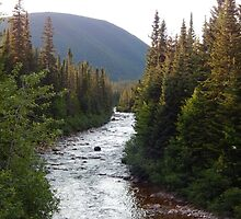 Mountain River by DanByTheSea