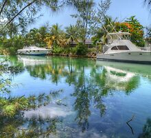 Peaceful River Scenery in Nassau, The Bahamas by Jeremy Lavender Photography