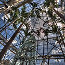 Glass House by Sharlene Rens