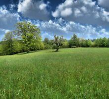 Appalachian Green by Hannah Joy Patterson