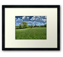 Appalachian Green Framed Print