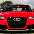 All New 2013 RS5 Coupe from Audi of Nashville - Chukkers for Charity 2012 Nashville Event by Daniel  Oyvetsky