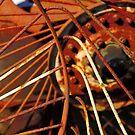 Rusty Dragon! by Stephen J  Dowdell
