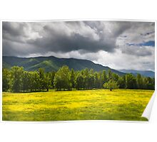 Cades Cove Great Smoky Mountains National Park TN - Fields of Gold Poster