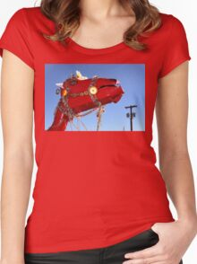 Decorate Your Camel Women's Fitted Scoop T-Shirt