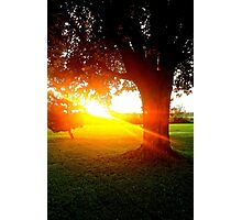 Sun Shining Photographic Print