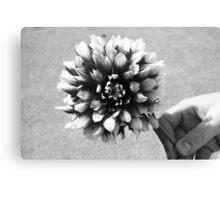 Floral.  Canvas Print