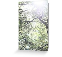 The forrest is my home. Greeting Card
