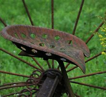 A Rusty Old Seat from a Hay Rake by vvfineartphotog