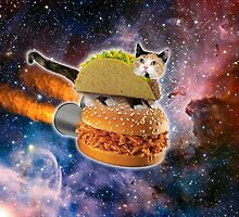 Taco Cat In Space by Eliotmad