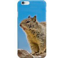 California Ground Squirrel, (Spermophilus beecheyi) iPhone Case/Skin
