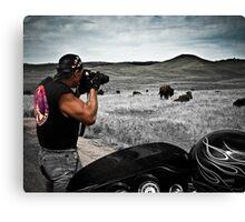 Photographing buffalo South Dakota Canvas Print
