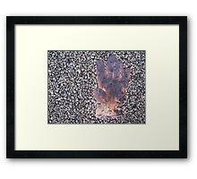 4/365 Greetings Framed Print