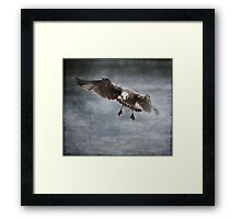 Wings Spread Framed Print