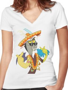 Discord  Women's Fitted V-Neck T-Shirt