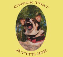 Check That Attitude by William C. Gladish