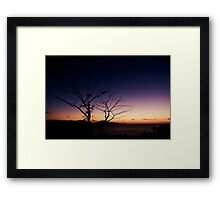 Pair on One Tree Hill Framed Print