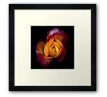 But I'll give you this instead... Framed Print