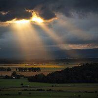Let there be Light! by Irina Chuckowree