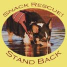 Snack Rescue!...Stand Back by William C. Gladish