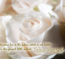 Take Peace! by Patricia L. Walker
