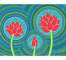 Lotus Family of Three Photographic Print
