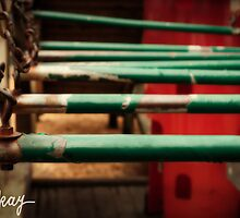 Rusty Monkey (Playground Series) by milkayphoto