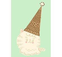 Holiday Ice Cream Cat Photographic Print