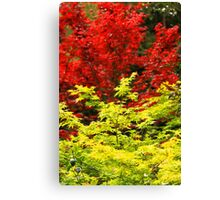 Red And Yellow Leaves Canvas Print