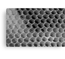 Honeycomb Detail Canvas Print