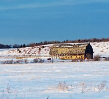 Barn gets a little glow from the Sun as it sits, waiting to be torn apart. by DanByTheSea