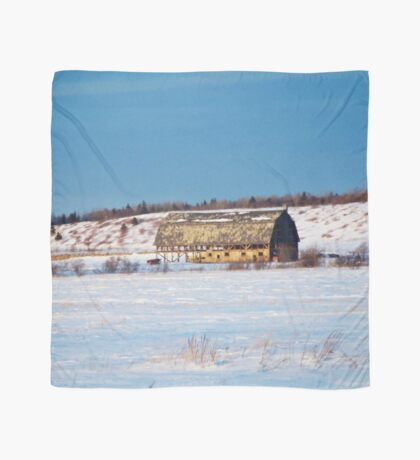 Barn gets a little glow from the Sun as it sits, waiting to be torn apart. Scarf