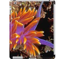 Spanish Shawl. (Flabellina iodinea) Santa Cruz Island, CA iPad Case/Skin