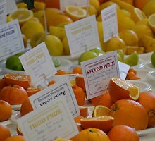 Citrus by TheaShutterbug
