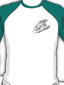 Looks Like a Turtle T-Shirt