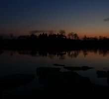 Sunset in Lisle Community Park by Adam Kuehl