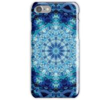 Spring Coral II iPhone Case/Skin