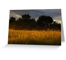 Yellow Streak Greeting Card