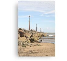 line of defence Canvas Print