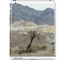 Dead Tree in Death Valley iPad Case/Skin