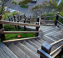 North Narrabeen stairs by Doug Cliff