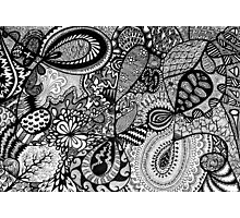 Black and white Doodle... Photographic Print