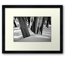 Snow Gums Framed Print